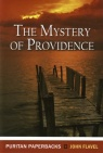 Mystery of Providence - Puritan Paperbacks